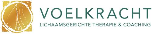 Logo Voelkracht